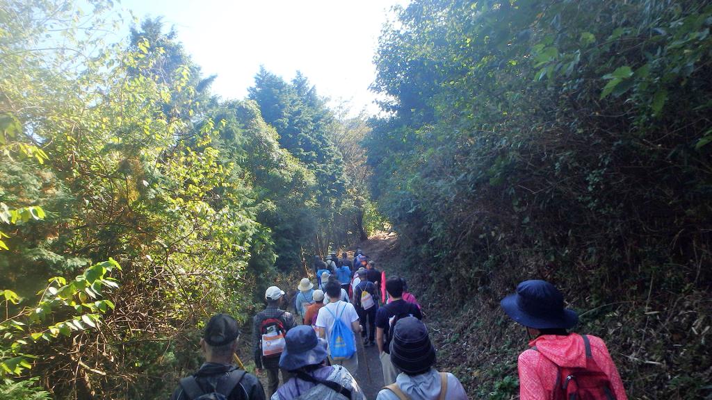 経塚山山頂から山道を下るBコース